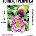 Foire aux plantes Vivaces à beau feuillage (CHâTEAU DE SAINT-PRIEST  -  MéTROPOLE DE LYON, 69)