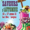Jardins et  Saveurs d'automne - LEOGNAN (LEOGNAN, 33)