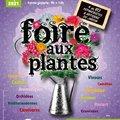 Foire aux plantes de Villeneuve sur Vère (VILLENEUVE SUR VEèRE, 81)