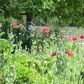 Le jardin d'Adoué (LAY-SAINT-CHRISTOPHE, 54)