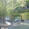 Parc Bordelais (BORDEAUX, 33)