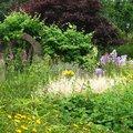 Les Jardins des Renaudies (COLOMBIERS-DU-PLESSIS, 53)