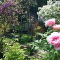 Le Jardin d'Eden  (TOURNON-SUR-RHONE, 07)