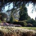 Jardin Botanique des Montagnes Noires (SPEZET, 29)