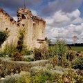 Jardin médiéval de plantes aromatiques et médicinales de la Commanderie de Sallebruneau (FRONTENAC, 33)