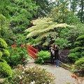 Parc botanique de Haute-Bretagne (LE CHATELLIER, 35)