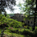 Jardins du Château Du Pin (FABRAS, 07)