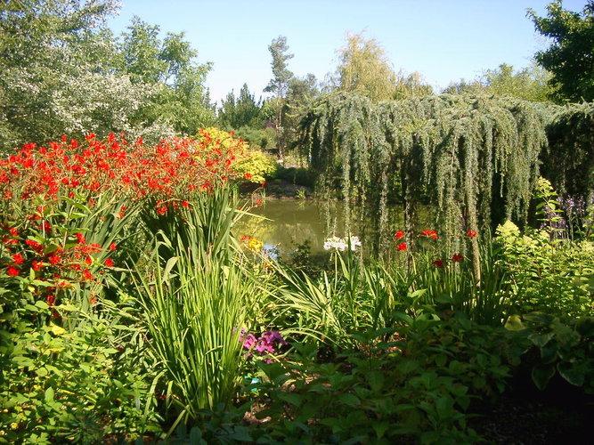 Jardin d'Elle