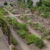 Jardin Monastique Des Dominicains De Haute-alsace