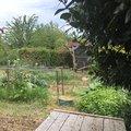 Jardins partagés, comment les cultiver après un confinement