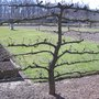 Au printemps, les visites du Domaine de Saint-Jean de Beauregard commencent