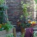 Un mini-potager pour balcon-terrasse ou jardin