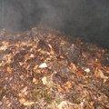 Le compostage et réduction des déchets