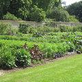 Effets d'une météo capricieuse sur le jardin de Saint-Jean de Beauregard