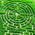 Labyrinthes végétaux à visiter en France