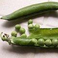Quels légumes semer ou planter en avril au jardin ?