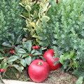 Jardinière d'hiver de feuillages