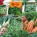 Quels légumes semer ou planter en septembre au jardin ?