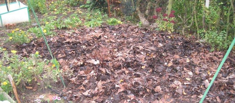Potager en hiver prêt à recevoir les semis et plantations