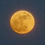 Super lune et jardinage : quelles conséquences ?