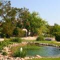 Avoir une piscine naturelle