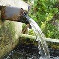 L'aquaponie et le jardin