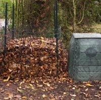 Ambiance du silo et du composteur en automne :