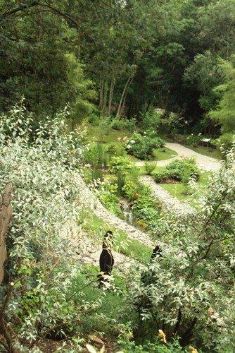 Le Jardin du Belvédère