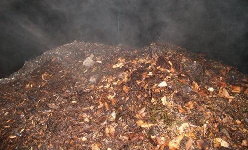 Techniques de compostage