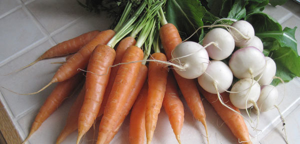 Qui sont les légumes primeurs ?