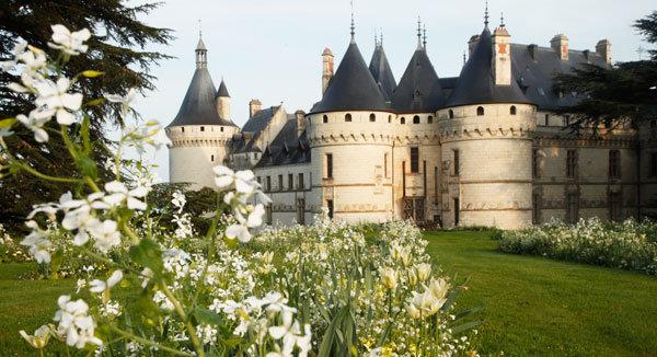 La biodiversité à Chaumont-sur-Loire