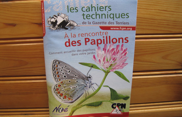 Le monde fabuleux des papillons