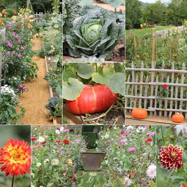 Le potager et le jardin fleuriste
