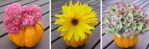 Fleurir ce vase végétal