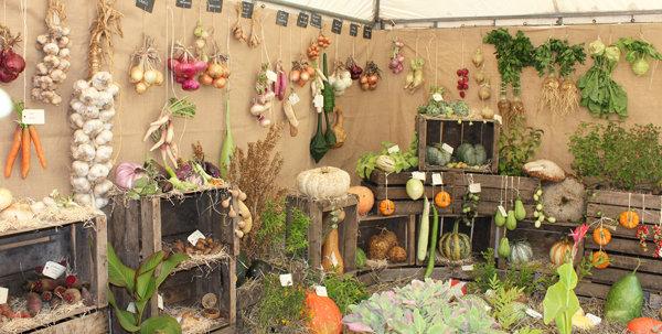 Collection de légumes anciens