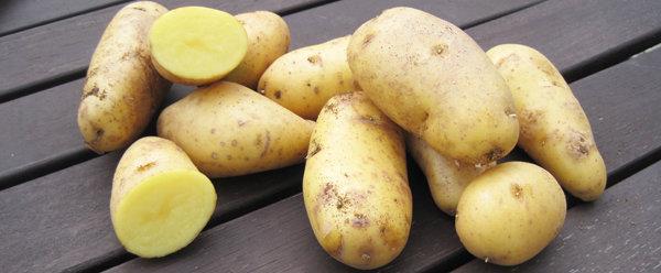La pomme de terre Pompadour